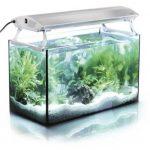 aquarium luminaire
