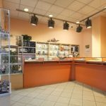 luminaire professionnel magasin